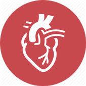 تجهیزات قلب و عروق